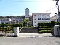 桐陽高等学校(高校)